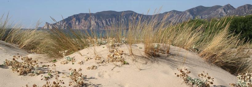 Playa de Plag'e Mesu - Costa Sur de Cerdeña